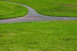 grass path #3 poster