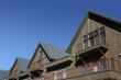 alpine roofs