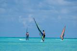 windsurfers poster