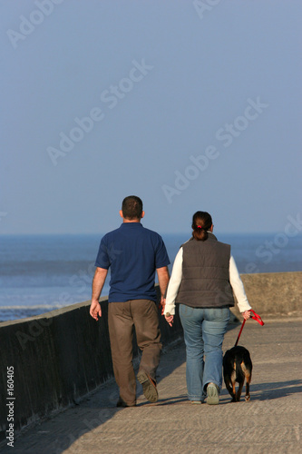 poster of a couple walking their dog.