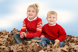 brother and sister sitting in pile of leaves poster