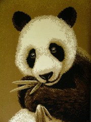 panda bear's picture on the fabric