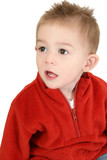 adorable one year old boy in red sweater poster