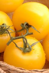 yellow tomatoes 2