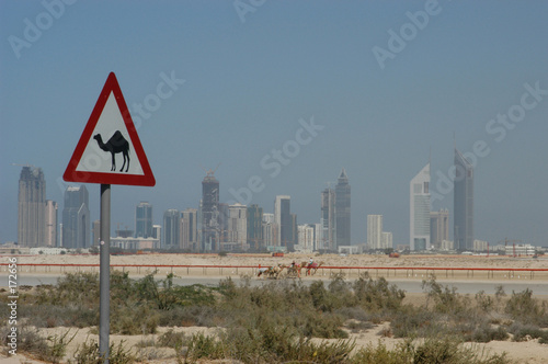 canvas print picture dubai