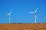 california windmills poster