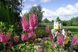garden - 177488