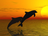 two dolphins swimming poster