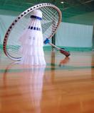 badminton 2 - 185869