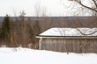 gray canadian winter