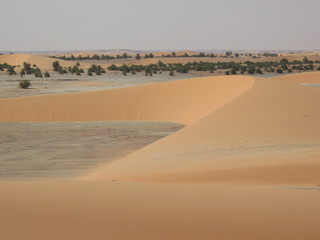 dune à faya largeau