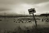 flood, svensen island 2 poster