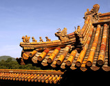 summer palace in china poster