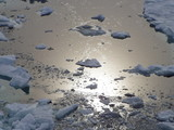 melting ice poster