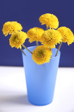 nice yellow flowers poster