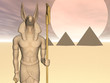 Постер, плакат: anubis of the pyramids