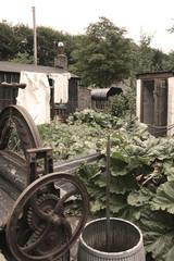 war-time garden