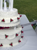 wedding cake cutting poster