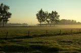 morning landscape poster