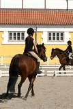 danish horse farm poster