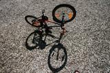 child bike and shade poster