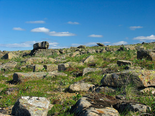 tundra with scattered stones