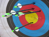 archery target poster
