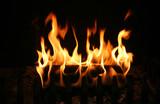 burning log poster