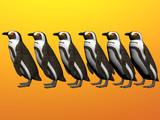 penguin row three poster