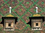 village roof poster
