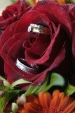 red rose and wedding rings poster