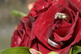 silver wedding rings, bands in red rose poster