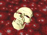 sandy skull poster