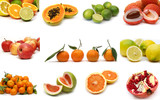 fruit collection poster