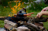 campfire picnic poster