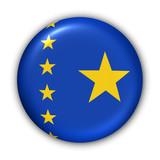 congo democratic republic flag poster
