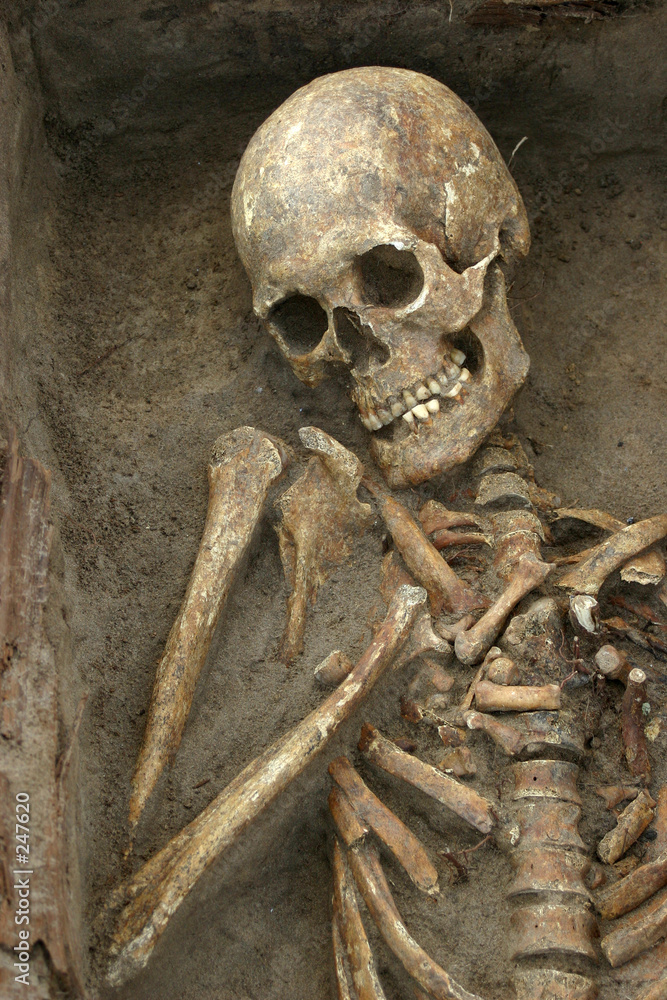 archeologia śmierć anatomia - powiększenie