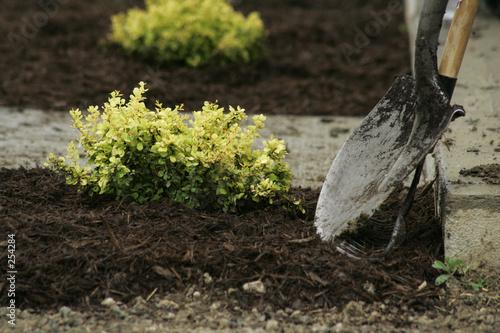 Leinwandbild Motiv planting time
