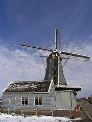 dutch windmill 6