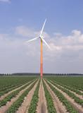 modern windmill 4 poster