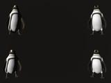 corner penguins - copy space poster