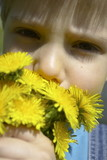 boy with dandelion poster