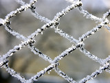 metal mesh poster