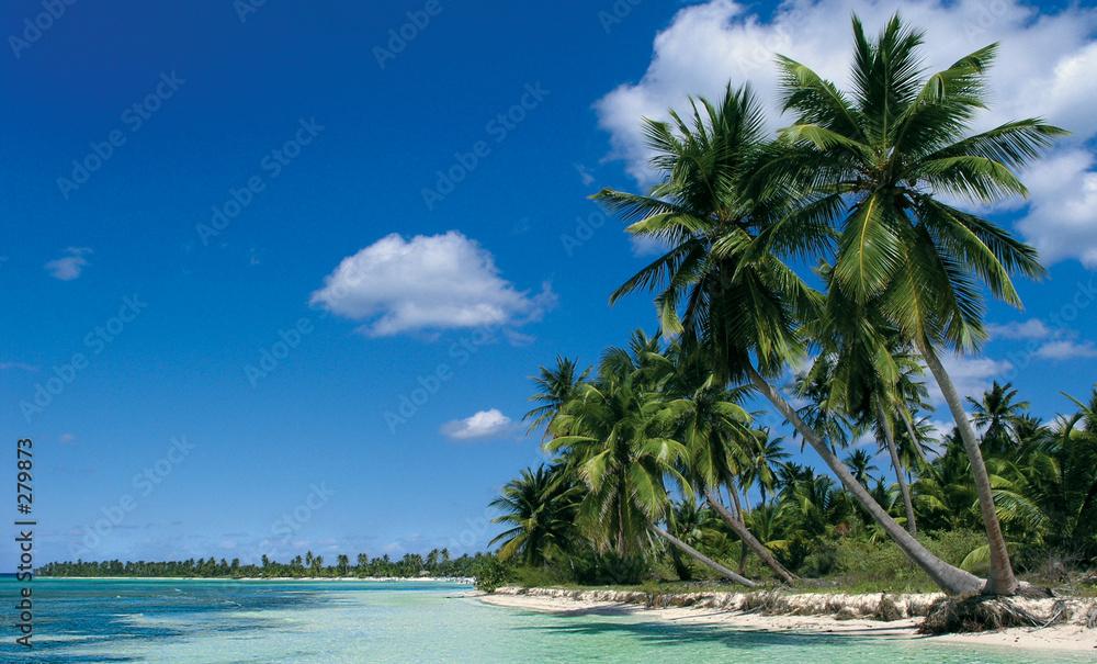 karaiby wyspa dominikana - powiększenie
