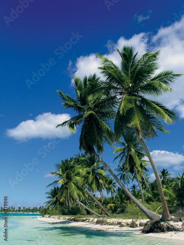Leinwanddruck Bild caribbean beach