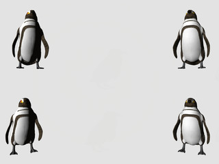 four corners penguins