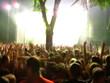concert euphoria