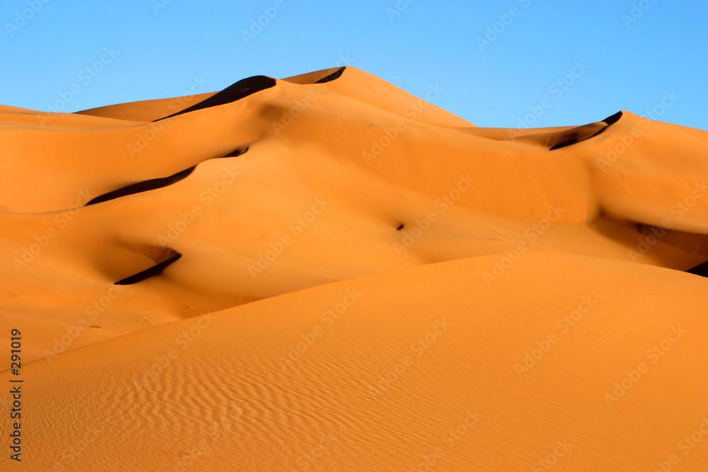 wielbłąd wydma garb - powiększenie