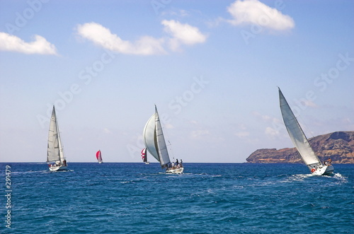 canvas print picture regatta