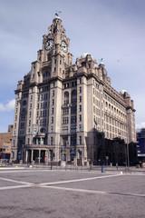 liver buildings